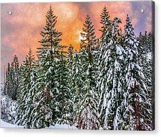 A Winters Sky Set Ablaze Acrylic Print