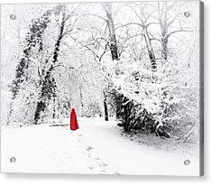 A Winter's Walk Acrylic Print by Jessica Jenney