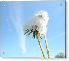 A Wish Blown Off To The Maker Acrylic Print