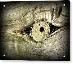 A Wooden Eye Acrylic Print