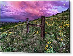A World Of Never Ending Happiness Acrylic Print