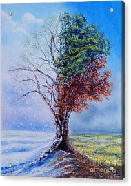A Year In The Tree Of Life Acrylic Print
