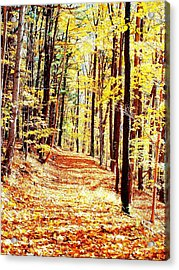 A Yellow Wood Acrylic Print by Joshua House