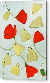 Aak 1630269 Acrylic Print by Megan Moore