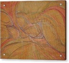 Abalone Acrylic Print by Caroline Czelatko