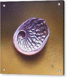 Abalone Shell -  A Acrylic Print