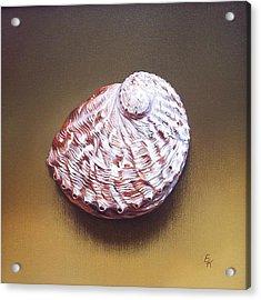 Abalone Shell - B Acrylic Print by Elena Kolotusha