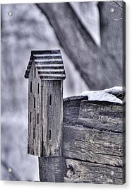 Abandoned Butterfly House Acrylic Print by Don Wolf
