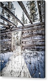 Abandoned Cabin Acrylic Print by Bryan Moore