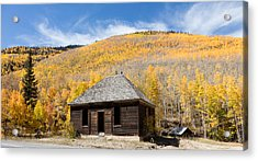 Acrylic Print featuring the photograph Abandoned Cabin Near The Old Mining Town Of Ironton by Carol M Highsmith