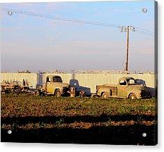 Abandoned Farm Trucks Tracy Ca Acrylic Print by Troy Montemayor