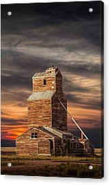 Abandoned Grain Elevator On The Prairie Acrylic Print by Randall Nyhof