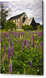 Abandoned House Acrylic Print by Benjamin Williamson