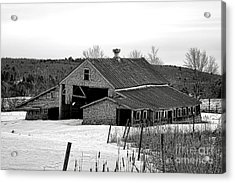 Abandoned Maine Barn In Winter Acrylic Print