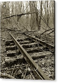 Acrylic Print featuring the photograph Abandoned Railroad 2 by Scott Hovind