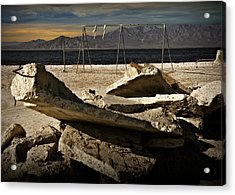 Acrylic Print featuring the photograph Abandoned Ruins On The Eastern Shore Of The Salton Sea by Randall Nyhof