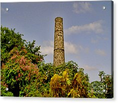 Abandoned Sugar Factory Nevis Acrylic Print by Louise Fahy