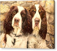 Abby And Romeo Acrylic Print by David Hoque