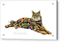 Abe Acrylic Print by Bob Coonts