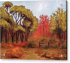 Abeel Fields Acrylic Print