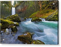Abiqua Falls In Spring Acrylic Print by David Gn