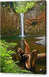 Abiqua Falls Oregon Acrylic Print