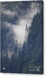 Above Juneau Acrylic Print by Stan and Anne Foster