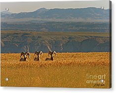 Above The Breaks-signed-#9386 Acrylic Print