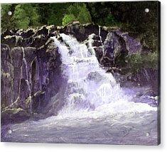 Abram's Falls Acrylic Print by Barry Jones