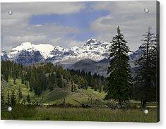 Absaroka Mts Wyoming Acrylic Print