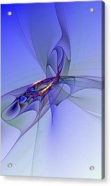 Abstract 110210 Acrylic Print by David Lane