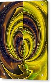 Abstract 121510 Acrylic Print