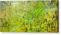 Abstract #42515b Or Marsh Life Acrylic Print