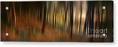 Autumn Forest Acrylic Print by Rod McLean