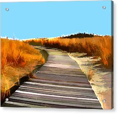 Abstract Beach Dune Boardwalk Acrylic Print by Elaine Plesser