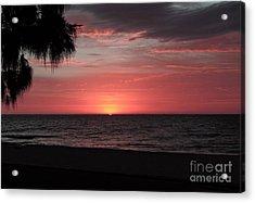 Abstract Beach Palm Tree Sunset Acrylic Print