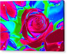 Abstract Burgundy Roses Acrylic Print by Karen J Shine