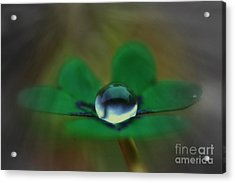 Abstract Clover Acrylic Print