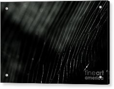 Acrylic Print featuring the photograph Abstract Cobweb by Yurix Sardinelly