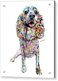 Abstract Cocker Spaniel Acrylic Print by Enzie Shahmiri