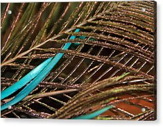 Abstract Feather  Acrylic Print