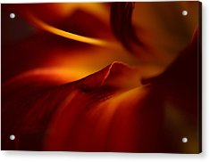 Abstract Floral Acrylic Print by Floyd Menezes