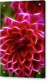 Abstract Flower Acrylic Print by Contemporary Art