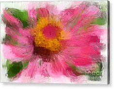 Abstract Flower Expressions Acrylic Print
