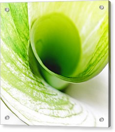 Abstract Green Wite Flowers Macro Photography Art Work Square Acrylic Print by Artecco Fine Art Photography
