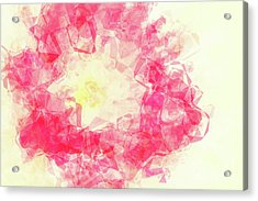 Abstract Flower Iv Acrylic Print