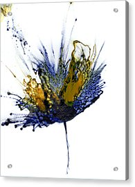 Abstract Flower Navy Blue Yellow 1 Acrylic Print by Catherine Jeltes