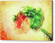 Abstract Flower V Acrylic Print