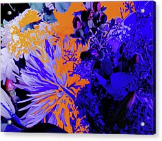 Abstract Flowers Of Light Series #1 Acrylic Print