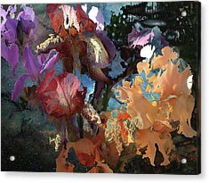 Abstract Flowers Of Light Series #15 Acrylic Print